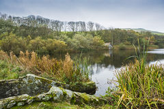 Mire Loch St Abbs Head Royalty Free Stock Images