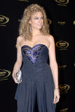Miri Ben-Ari on the red carpet. royalty free stock photography