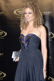 Miri Ben-Ari on the red carpet. Miri Ben-Ari, the hip-hop violinist, appearing on the red carpet on October 10th, 2007 stock photo
