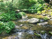 Miriam-Fluss lizenzfreie stockfotografie