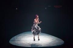 Miriam Yeung koncert 2015 Zdjęcie Stock