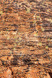 Mirima rock formation near Kunururra Stock Photography