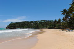 Mirissa beach. Mirissa tropical paradise beach sri lanka Royalty Free Stock Photos
