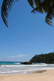 Mirissa beach royalty free stock photo