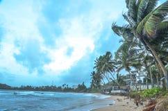 Mirissa beach,Sir Lanka. Mirissa Beach,in the Sir Lanka stock images