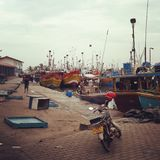 Mirissa fishing port Royalty Free Stock Image