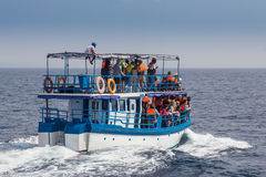 Mirissa is place which has the biggest blue whale. MIRISSA, SRI LANKA-February 01, 2015: People travelling by boats to see blue whales. Mirissa is the place royalty free stock image