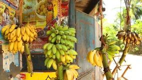 MIRISSA, SRI LANKA - MÄRZ 2014: Ansicht von den Bananen, die im lokalen Shop in Mirissa, Sri Lanka hängen stock video
