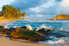 Mirissa Strand-Wellen, welche die Felsen-Insel tropisch brechen Lizenzfreie Stockbilder