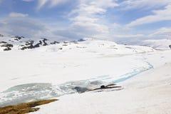 Mirkdalsvatnet在雪盖了 免版税库存照片
