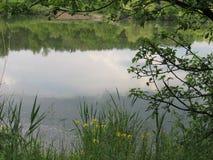 Miroir d'étang Images stock