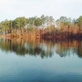 Miroir de lac avec les arbres Photos libres de droits