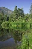 Miroir de nature Photographie stock libre de droits