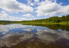 Miroir des nuages et de la forêt Photos stock