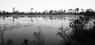 Miroir noir et blanc sur le lac images stock
