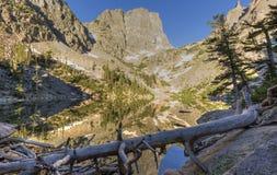 Miroir vert de lac Photos stock