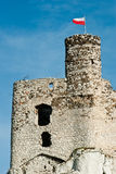 Mirow castle Royalty Free Stock Photography