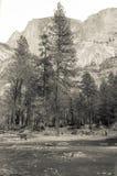 Mirror湖加利福尼亚 库存照片