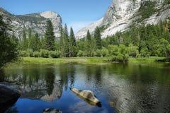 Mirror湖反射,优胜美地国家公园 免版税库存图片