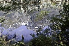 Mirror湖在峡湾国家公园 美丽的新西兰 免版税库存照片