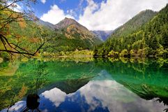Mirror湖,九寨沟 免版税库存照片