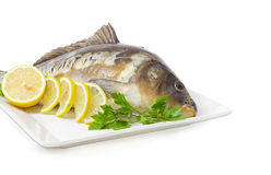 Mirror carp prepared for cooking on dish closeup Royalty Free Stock Photos