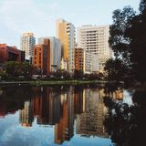 Mirror city. City reflection and nature in Golden Hour Stock Images