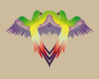 Mirror colorful parrot Royalty Free Stock Images