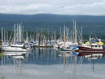 Mirror image. These docks reflect a good number of pleasure boats,sail boats and yachts Stock Photo