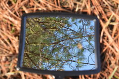 Mirror image of sky. Mirror image of the sky from the ground Stock Image