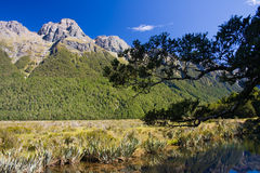 Mirror Lake. Southern Alps and beautiful Mirror Lake at the side of the road to Milford Sound. National PArk Fiordland, South Island, New Zealand royalty free stock image