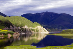Mirror Lake. July gate source is a paradise on earth.The more than 3200 meters above sea level in Qinghai area Stock Images