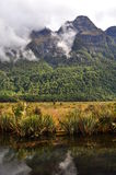 Mirror Lake close to Milford Sound, New Zealand Royalty Free Stock Images