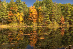 Mirror Lake Fall Reflections. This small lake has naturally dark water like tea. It makes for an excellent reflections especially on a calm sunny day in Autumn stock photos