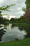 Mirror Lake, Forest Lawn. Located at Mirror Lake found in Forest Lawn Cemetery, in Buffalo, NY Stock Images