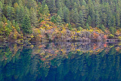 Mirror lake, Jiuzhaigou. Mirror lake of Jiuzhaigou, China Royalty Free Stock Photo