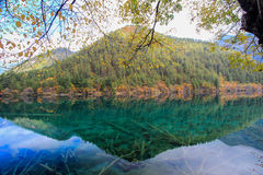 Mirror Lake,Jiuzhaigou,north of Sichuan province, China. stock image
