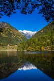 Mirror lake at Jiuzhaigou scenic Royalty Free Stock Photos