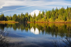 The Mirror lake and the mount hood Stock Image
