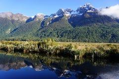 Mirror Lake near Milford Sound, New Zealand Royalty Free Stock Image