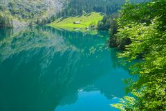 Mirror lake Obersee surrounded by young greenery. Alpine meadow and rural hut. royalty free stock photo
