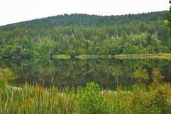 Mirror lake reflection Stock Photos