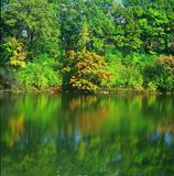Mirror Lake Reflections - Minnesota Royalty Free Stock Image