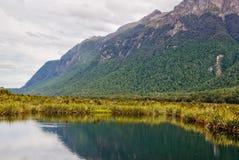 Mirror Lake 2 - Te Anau Royalty Free Stock Photo