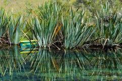 Mirror Lake 1 - Te Anau Royalty Free Stock Photo
