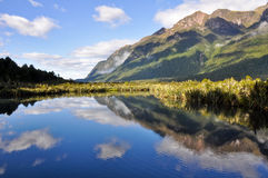 Mirror lakes, Milford Sound (New Zealand) Stock Photos