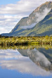 Mirror lakes, Milford Sound (New Zealand) Royalty Free Stock Photo