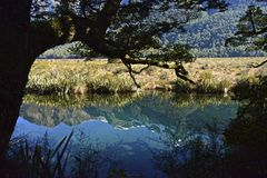 Mirror Lakes New Zealand. Mirror Lake The mirror is located on the South Island of New Zealand Royalty Free Stock Image