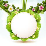 Mirror with leafs Stock Photography