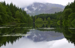 Mirror Like Lochan Royalty Free Stock Photos